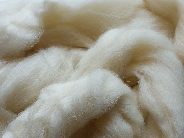 Shetland weiß